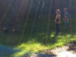 kinderopvang Houten-gastouder-de-kinderherberg-houten-achter-de-eendjes-aan